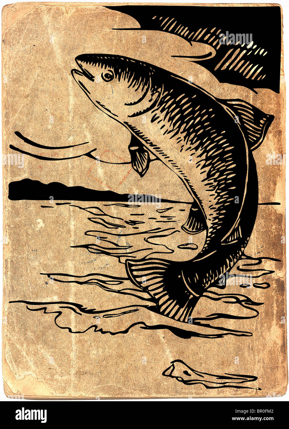 Fish jumping out of the water on vintage paper background - Stock Image