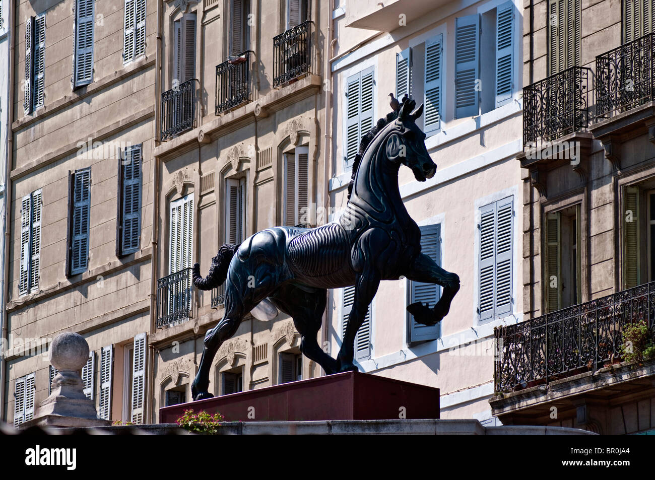 Denver Horse Statue Stock Photos & Denver Horse Statue Stock Images ...