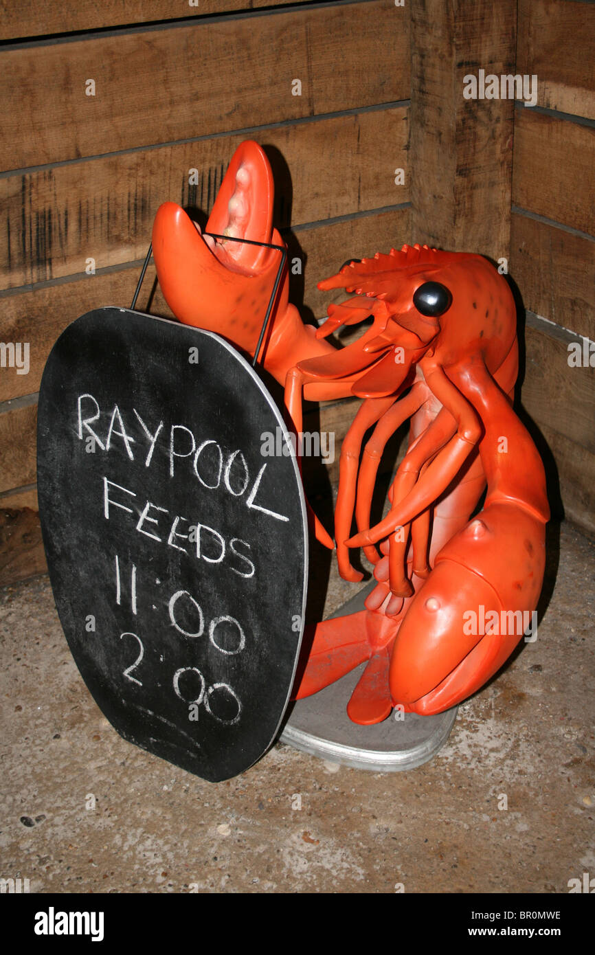 Plastic Red Lobster Sculpture Advertising Aquarium Ray Pool Feeds - Stock Image