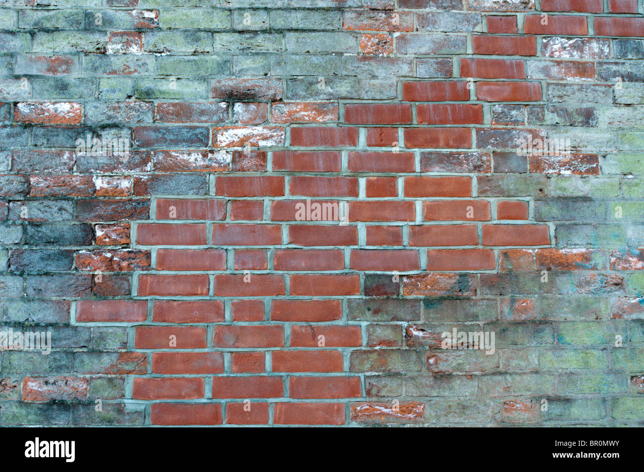 A crack in an old brick wall has been cut back and repaired with new red bricks - Stock Image