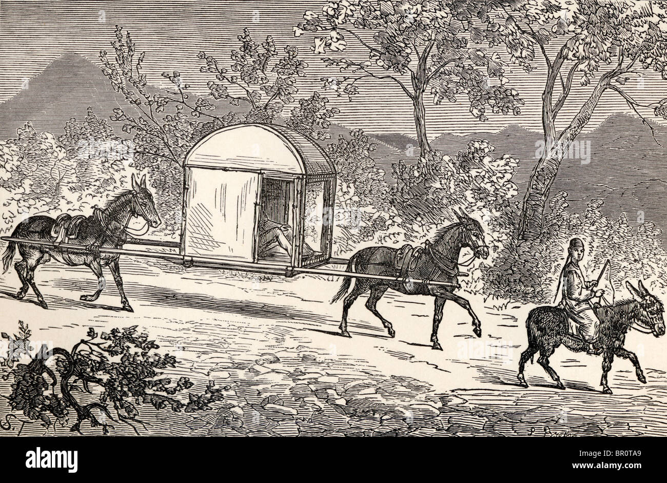 A Horse and Mule Palanquin used by the Chinese aristocracy in China in the 19th century. - Stock Image