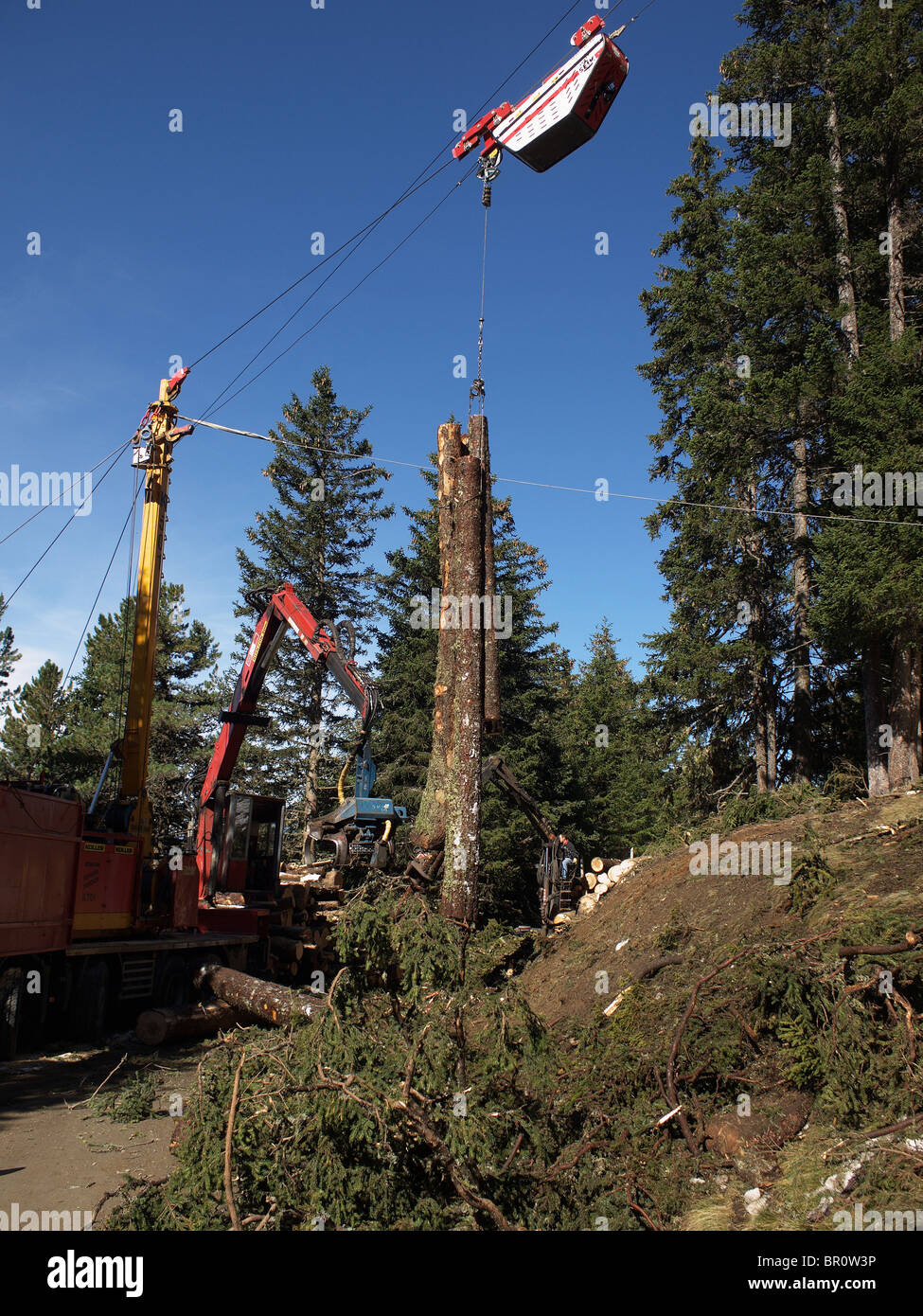 Mechanised logging operation a transporter on an an overhead wire rope transports trees down for debarking cutting Stock Photo