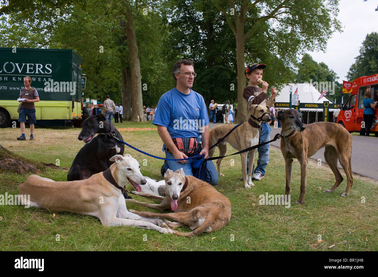 A man and boy with 5 greyhound dogs on the grass. - Stock Image