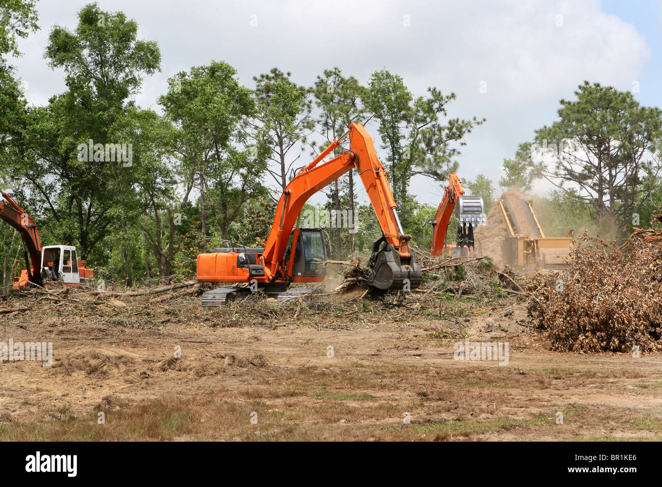 Backhoes operate clearing trees and brush from a construction site. - Stock Image