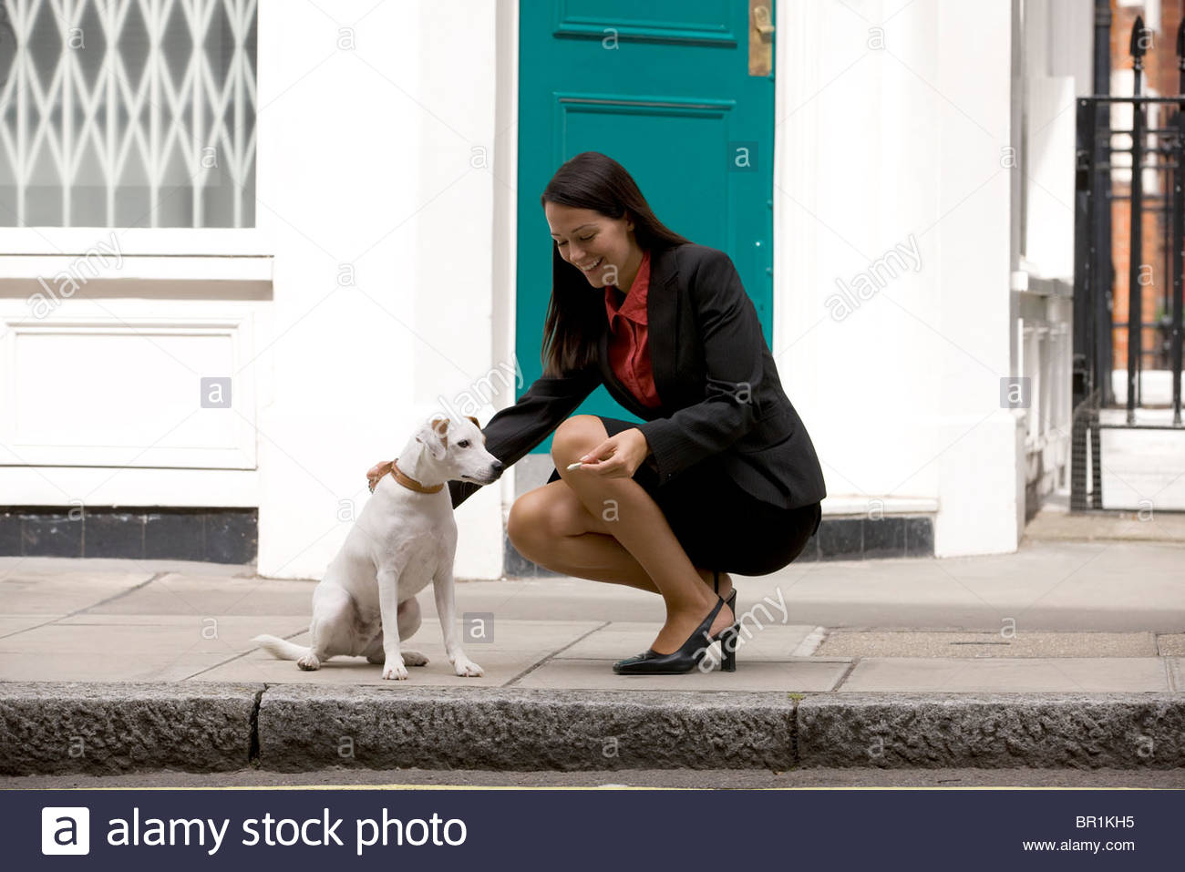 A businesswoman giving her dog a treat - Stock Image