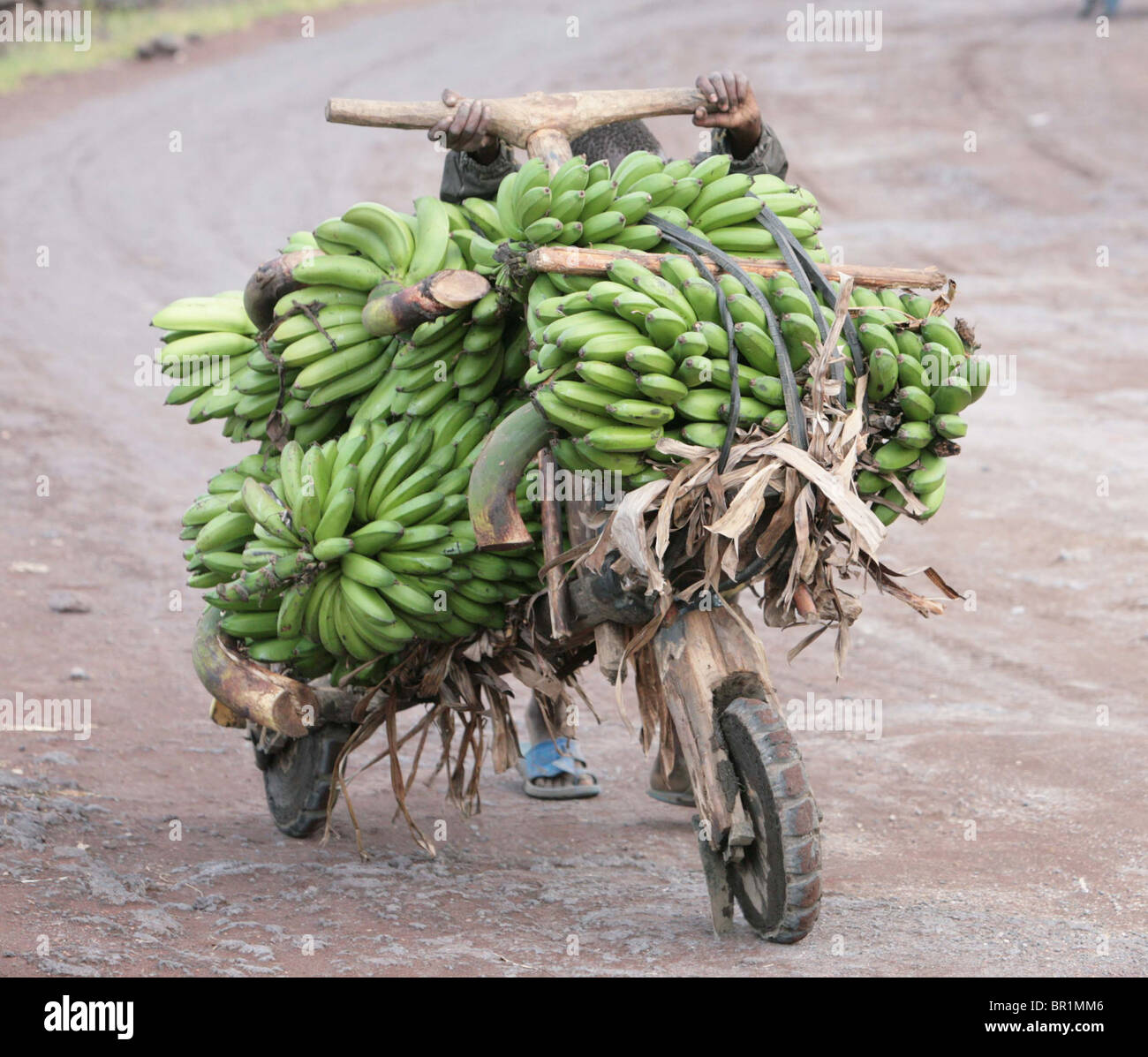 A boy pushes his load of bananas to market on the road outside Goma Congo - Stock Image