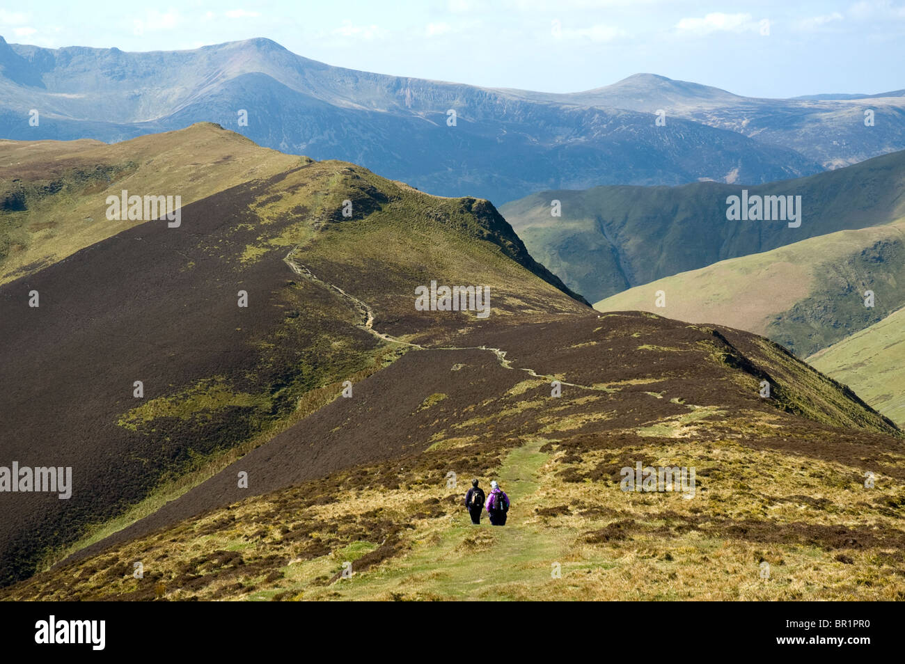 Hill walkers on the ridge of Ard Crags, Derwent Fells, near Keswick, Lake District, Cumbria, England, UK - Stock Image