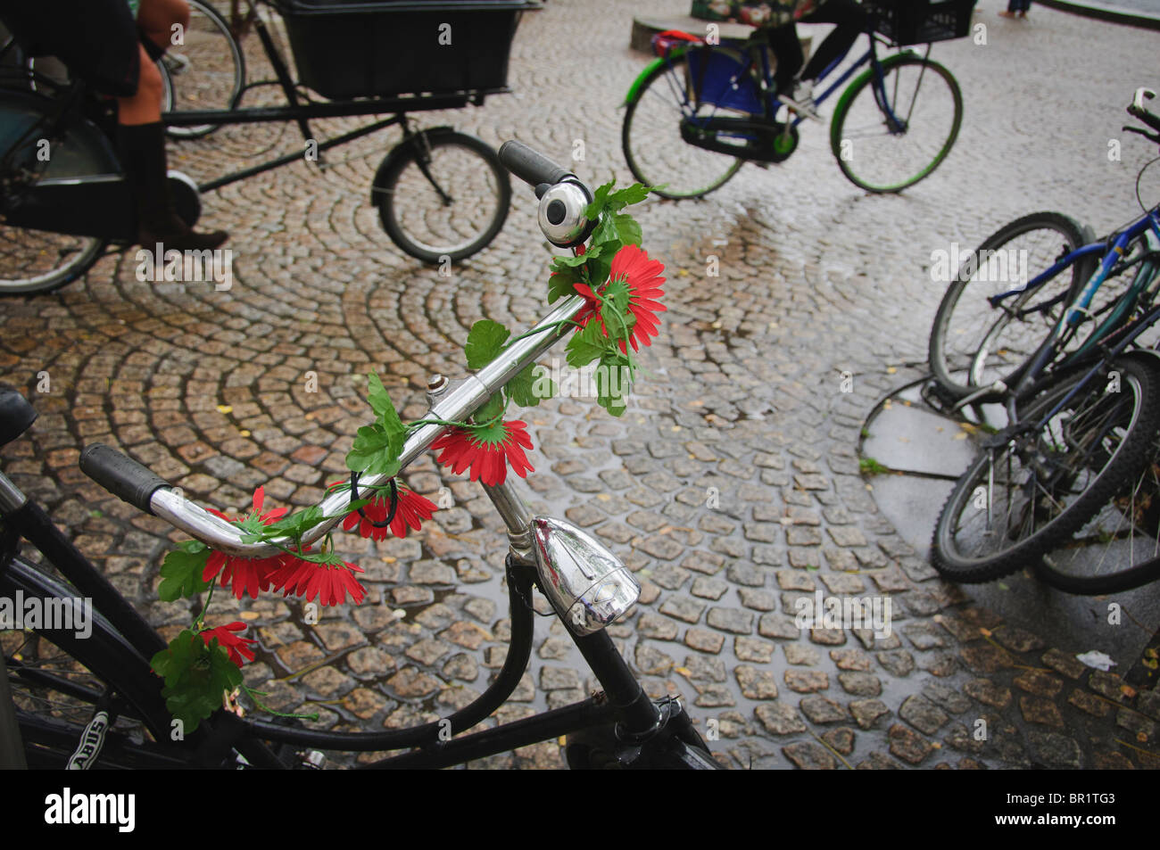 Bicycle handlebars decorated with red, flowers - Stock Image