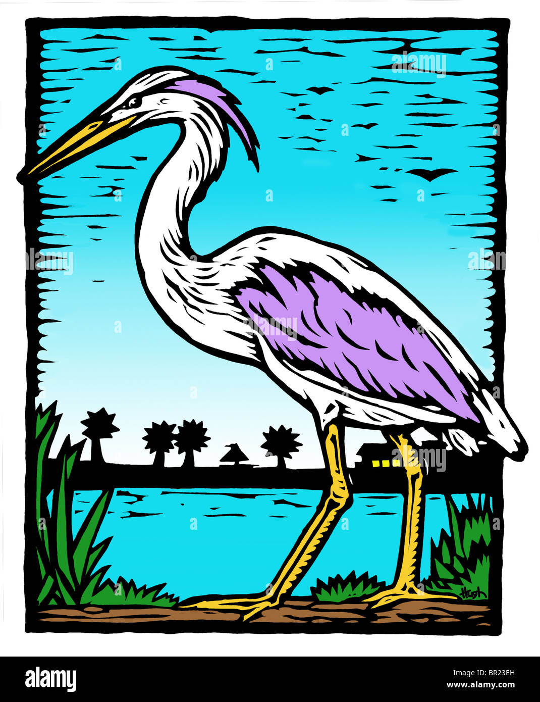 A drawing of a heron - Stock Image