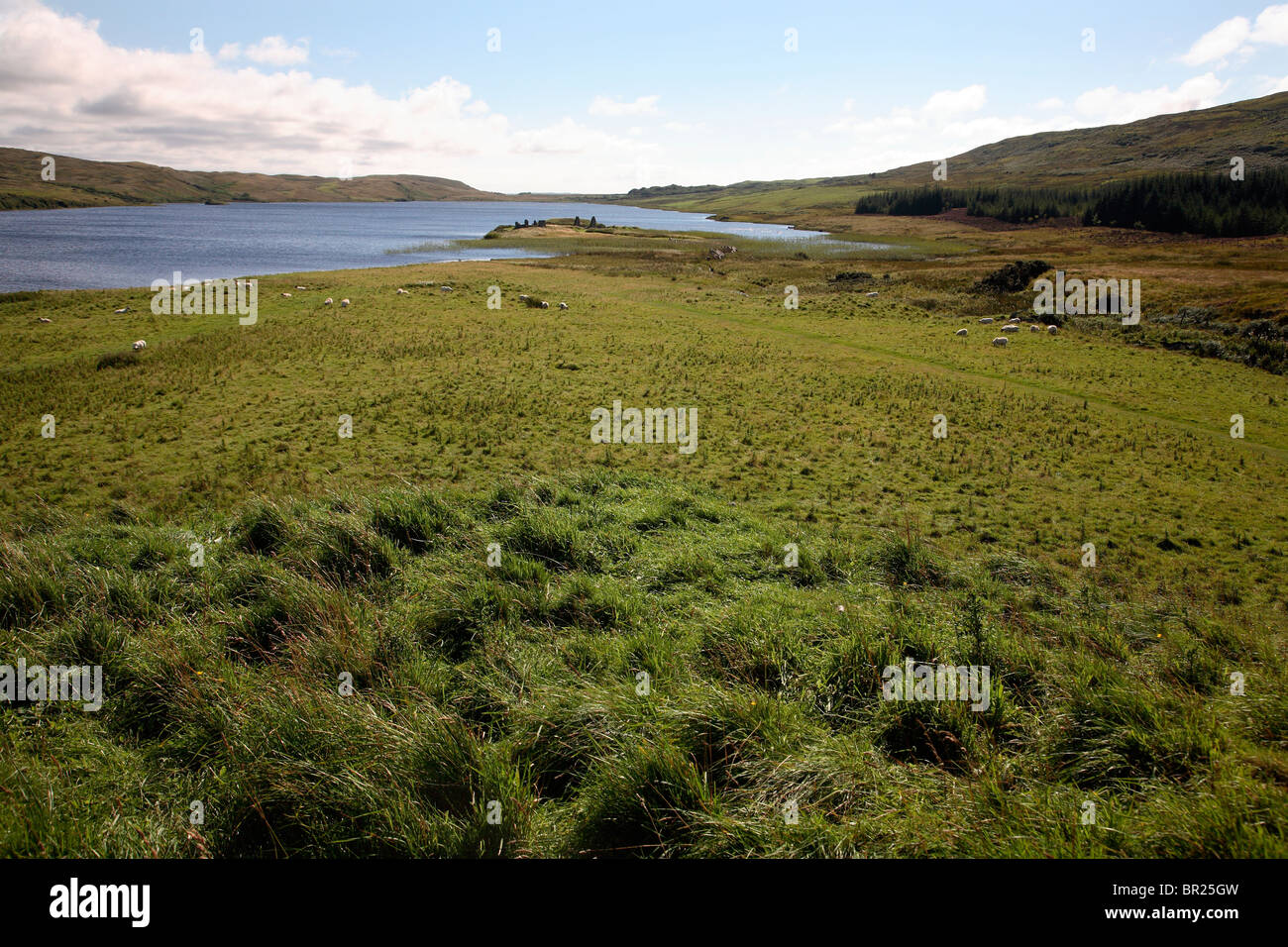 Scotland Islay Loch Finlaggan Stock Photo