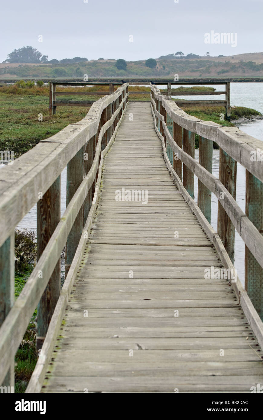 Wooden pier in the Elkhorn Slough, a tidal estuary. Stock Photo