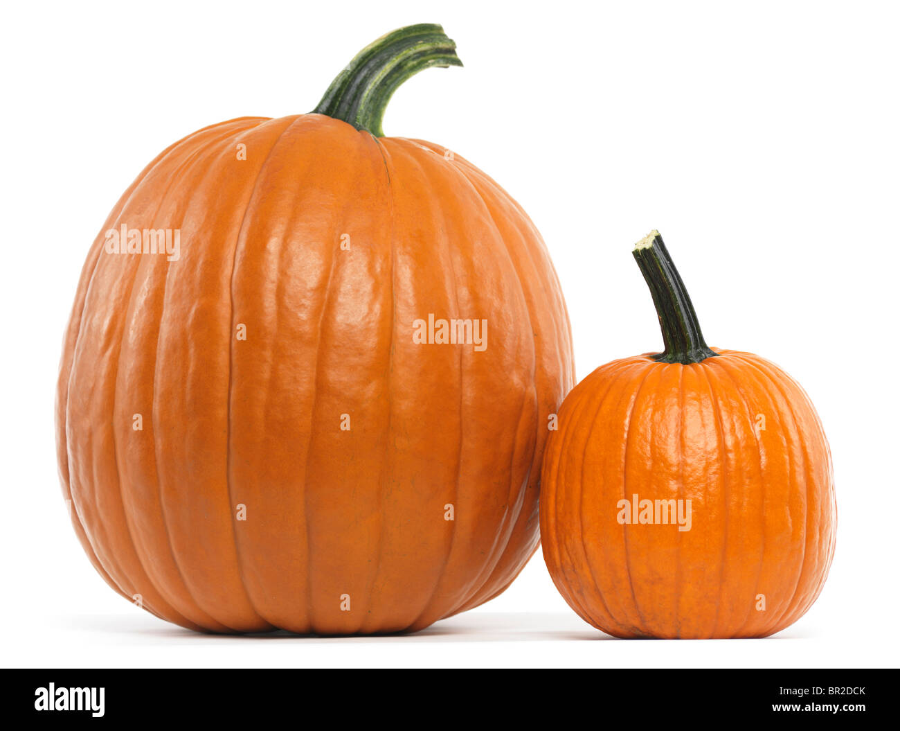 Large and a small pumpkin isolated on white background - Stock Image