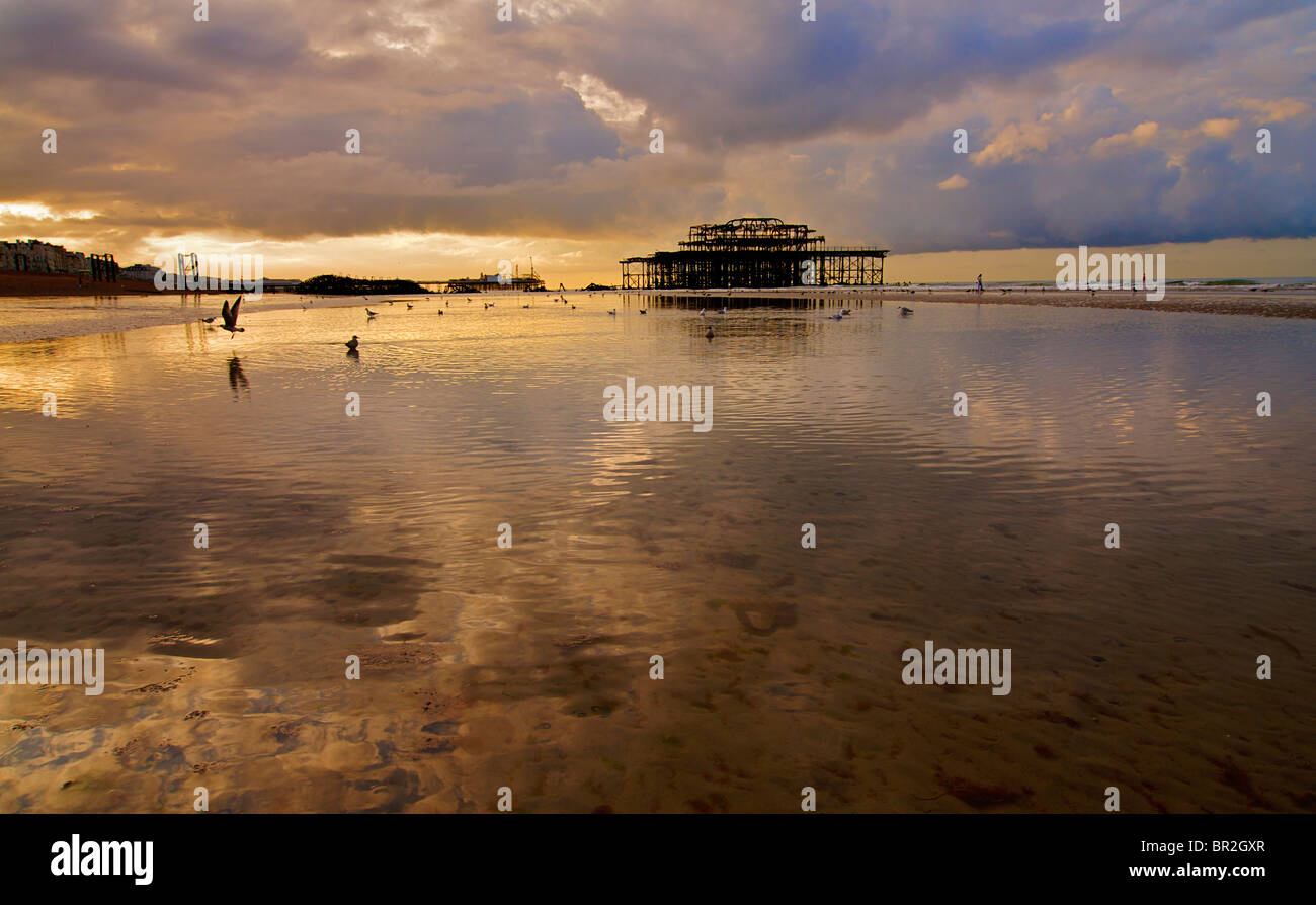 Hove beach and the view towards Brighton and the derelict West Pier at low tide, Brighton and Hove, East Sussex, - Stock Image