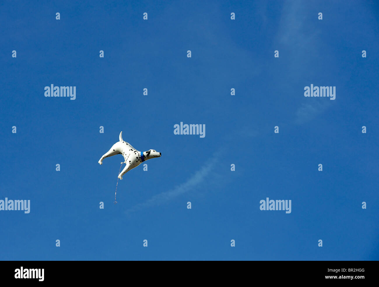 Runaway ballon in the shape of a dalmation dog against a blue sky. - Stock Image