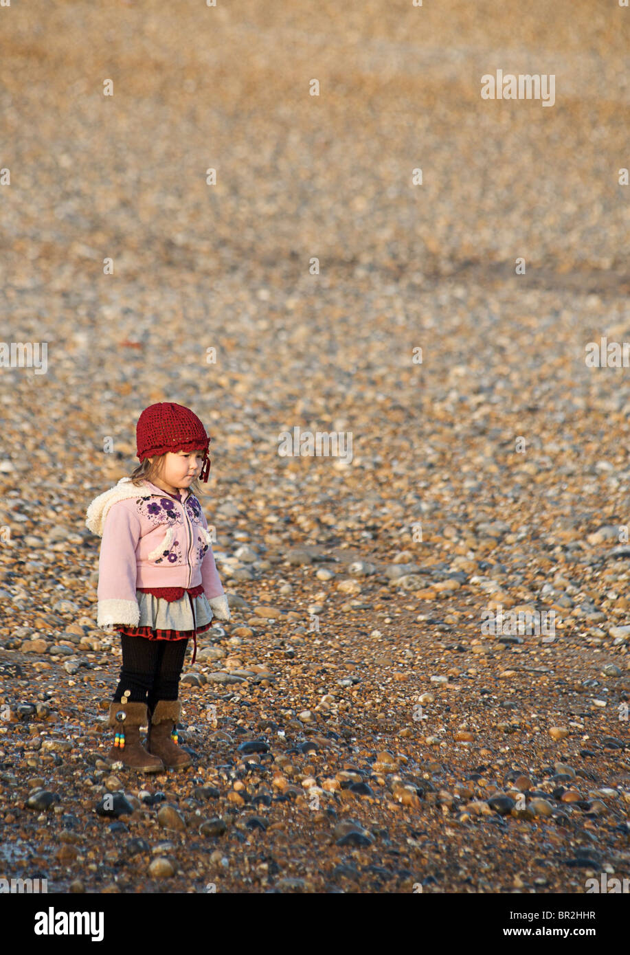 MODEL RELEASED Young girl aged 2 standing on a beach looking seawards. Brighton - Stock Image