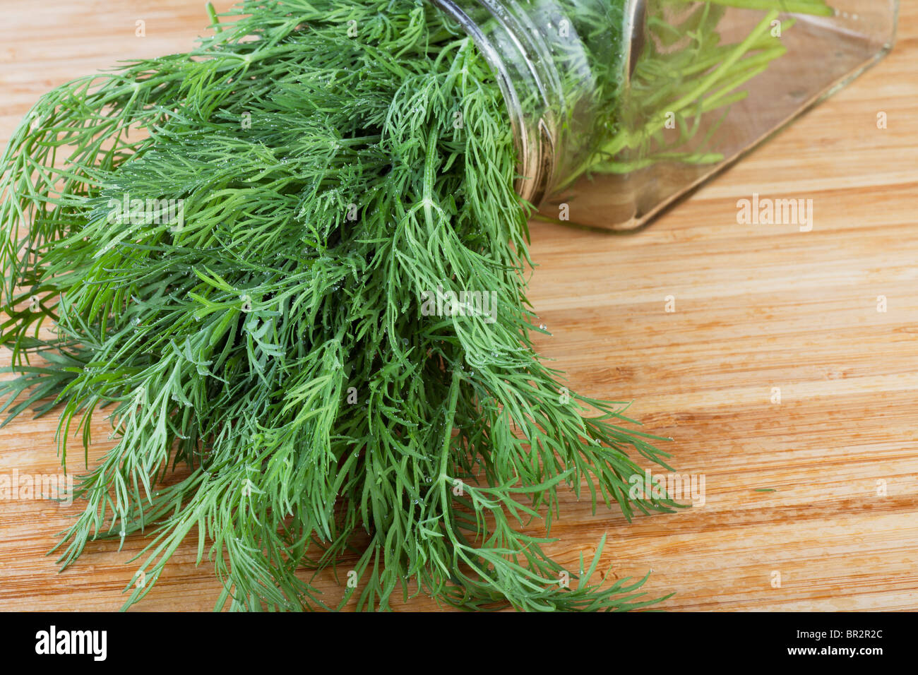 Fresh dill covered in water drops, on cutting board - Stock Image