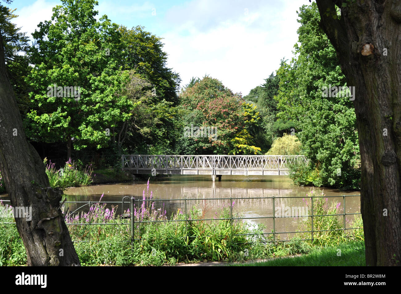 A bridge across one of the lakes in Birkenhead Park set amongst peaceful countryside, viewed through two tall trees. - Stock Image