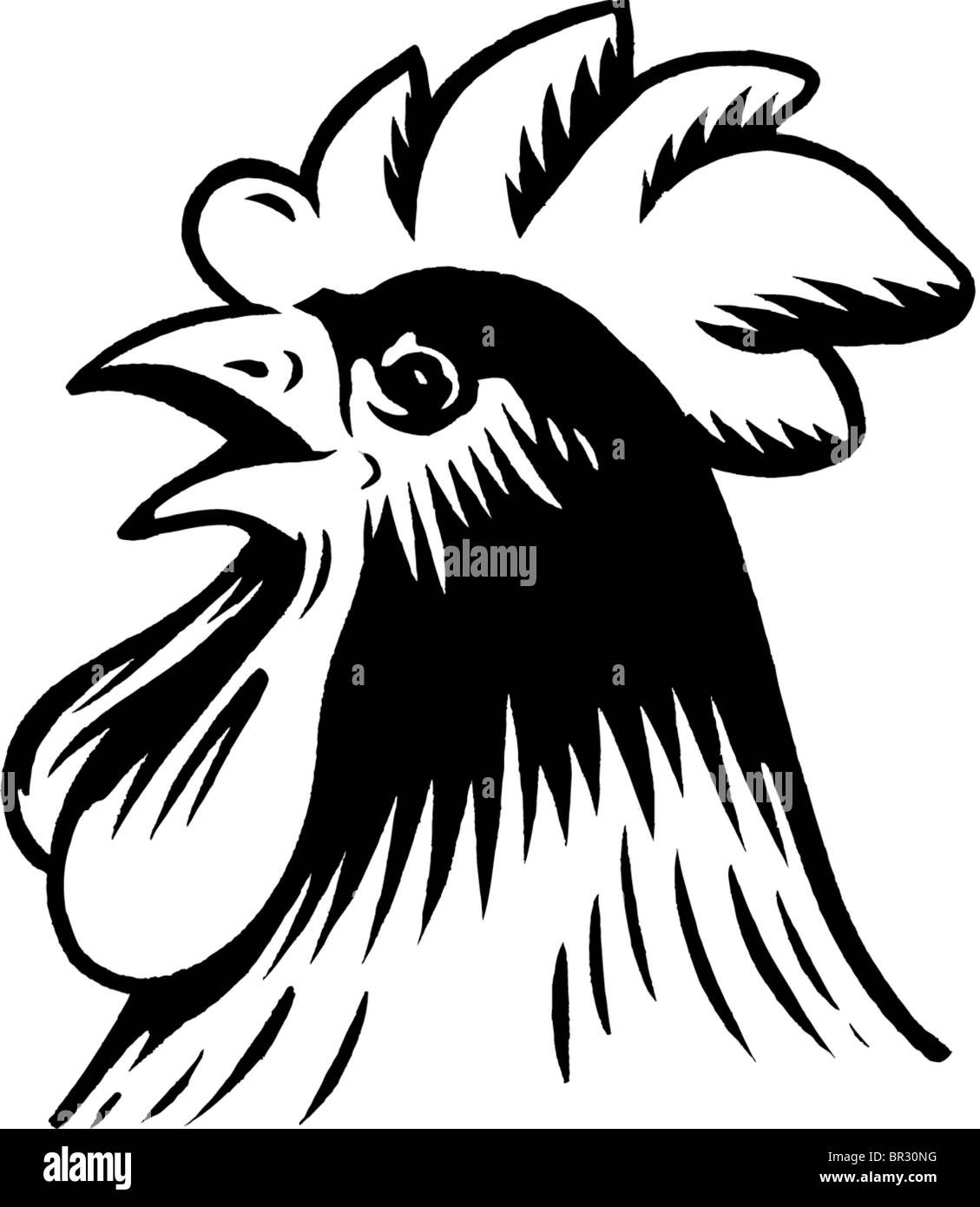 A black and white drawing of a rooster Stock Photo