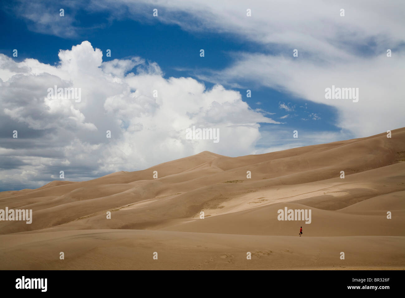 A runner appears small compared to dunes of Great Sand Dunes National Park, CO. - Stock Image