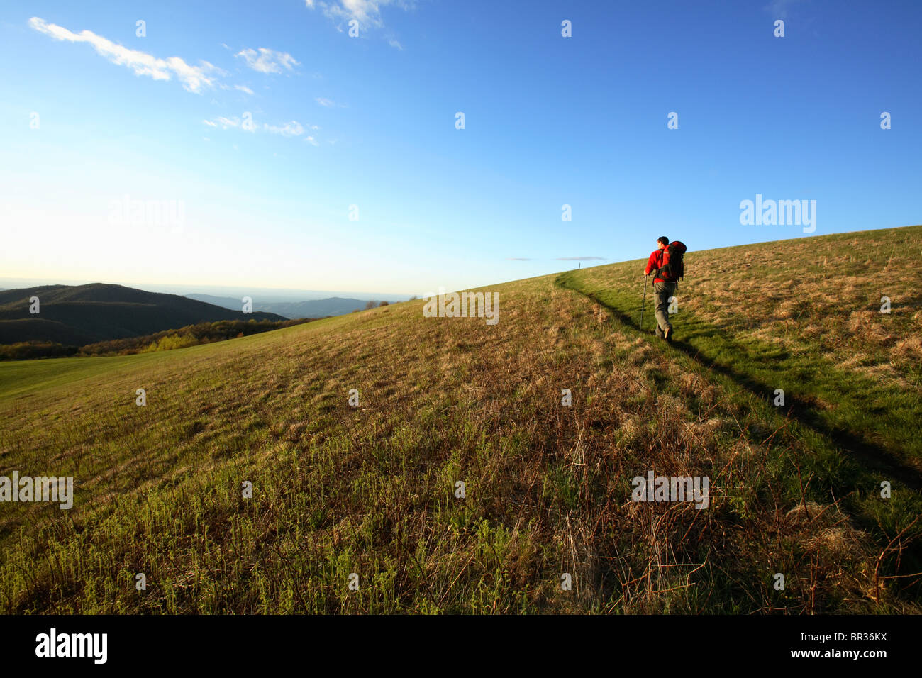 Male backpacker climbs the final stretch of the Appalachian Trail to the summit of Max Patch Bald west of Asheville, - Stock Image