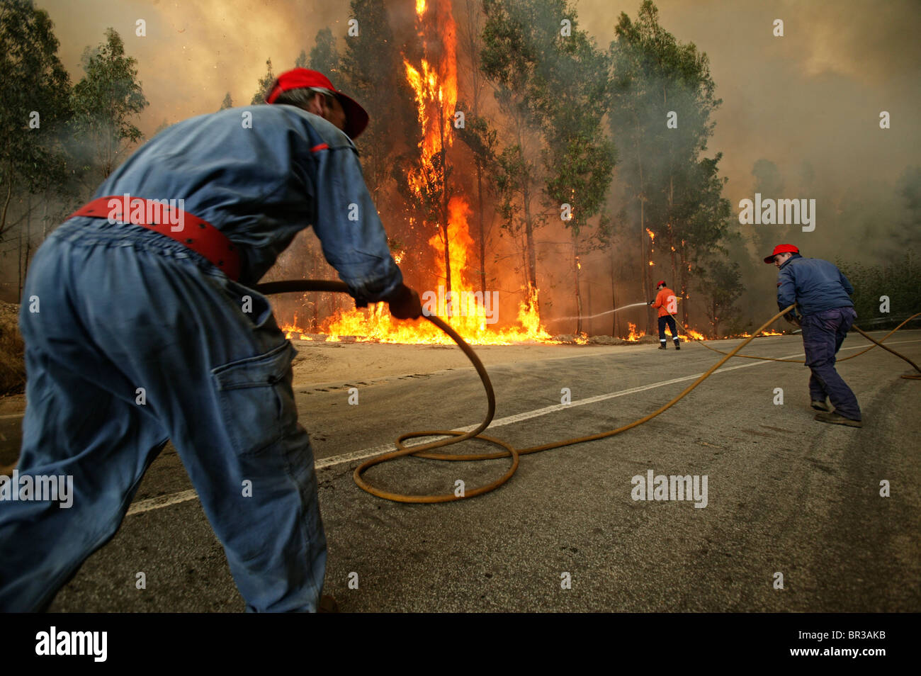 Three firemen try to extinguish a massive wildfire - Stock Image