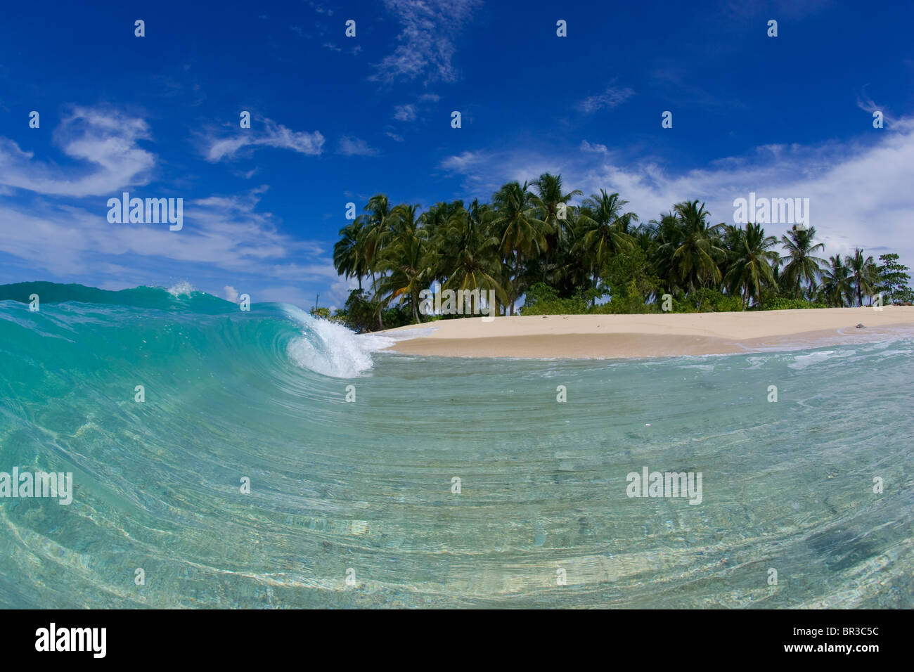 rolling wave with island behind, Mentawai Islands - Stock Image