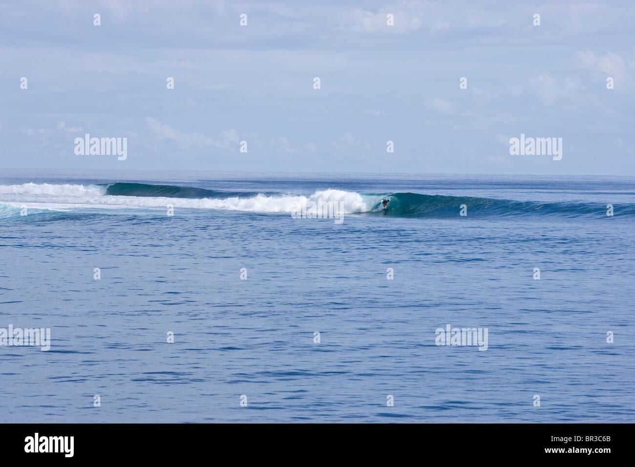 surfingin the Mentawai Islands - Stock Image