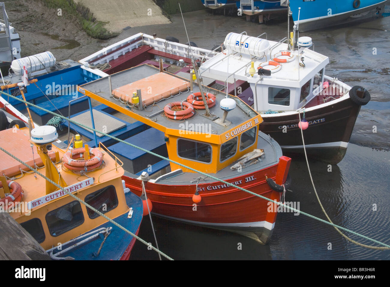 Seahouses harbour on the northumberland coast - Stock Image