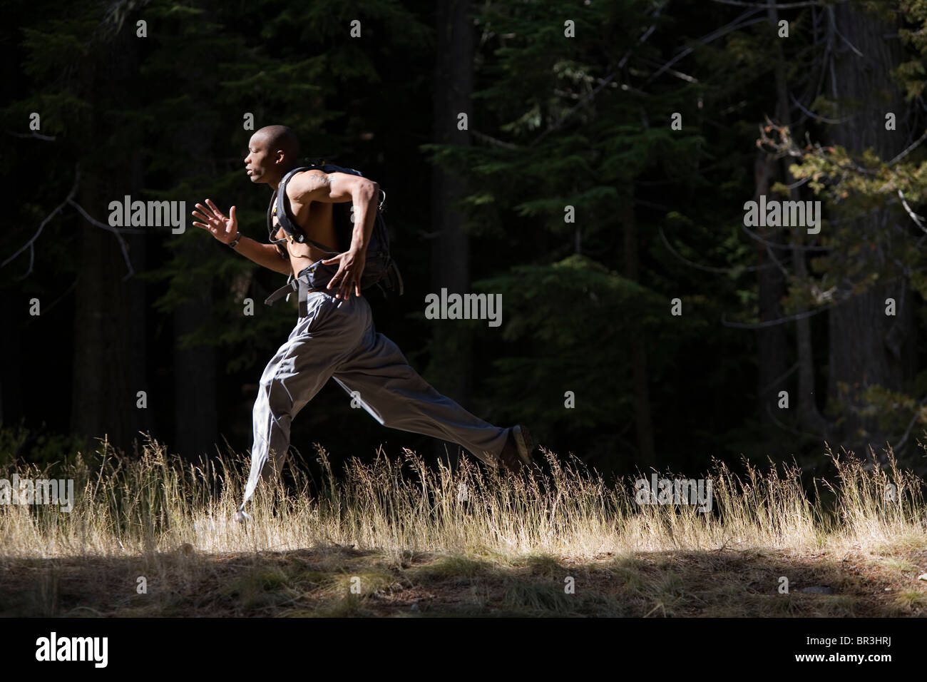 African American man, Cupid Alexander, runs on trail near Mt. Hood in the Cascade Mountains, Oregon. (high contrast) - Stock Image