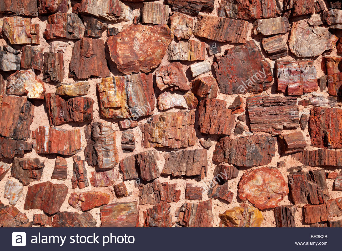Detail wall built with petrified wood Petrified Forest National Park Arizona - Stock Image