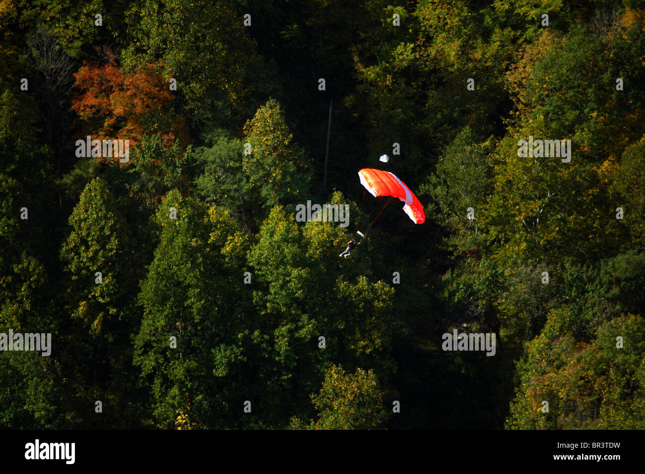Unknown basejumper floats down under his canopy past autumn colors in the New River Gorge at the 2007 Bridge Day - Stock Image
