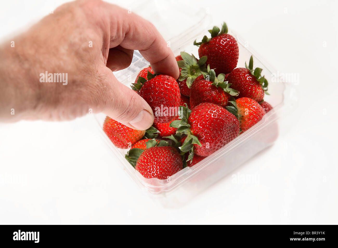 Male hand picking a Strawberry from a punnet or basket of Strawberries - Stock Image