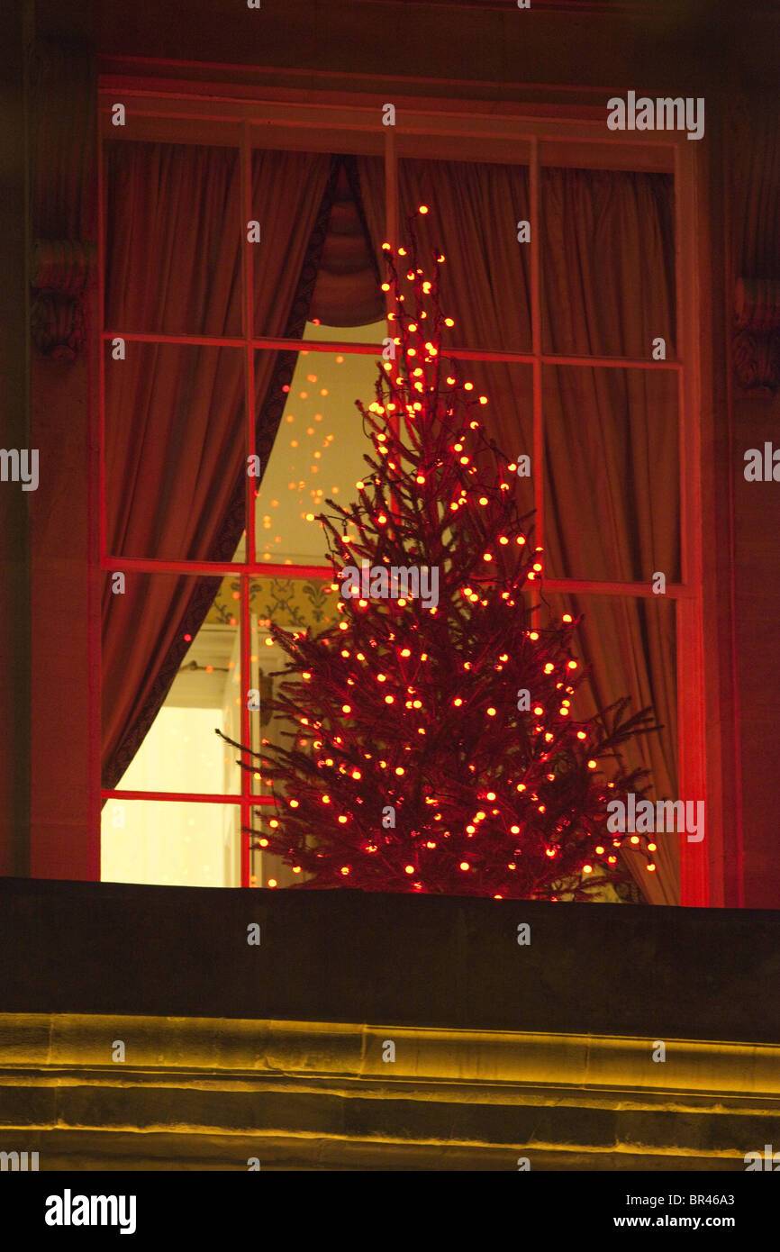 Christmas tree and lights seen through a regency window, Cheltenham ...