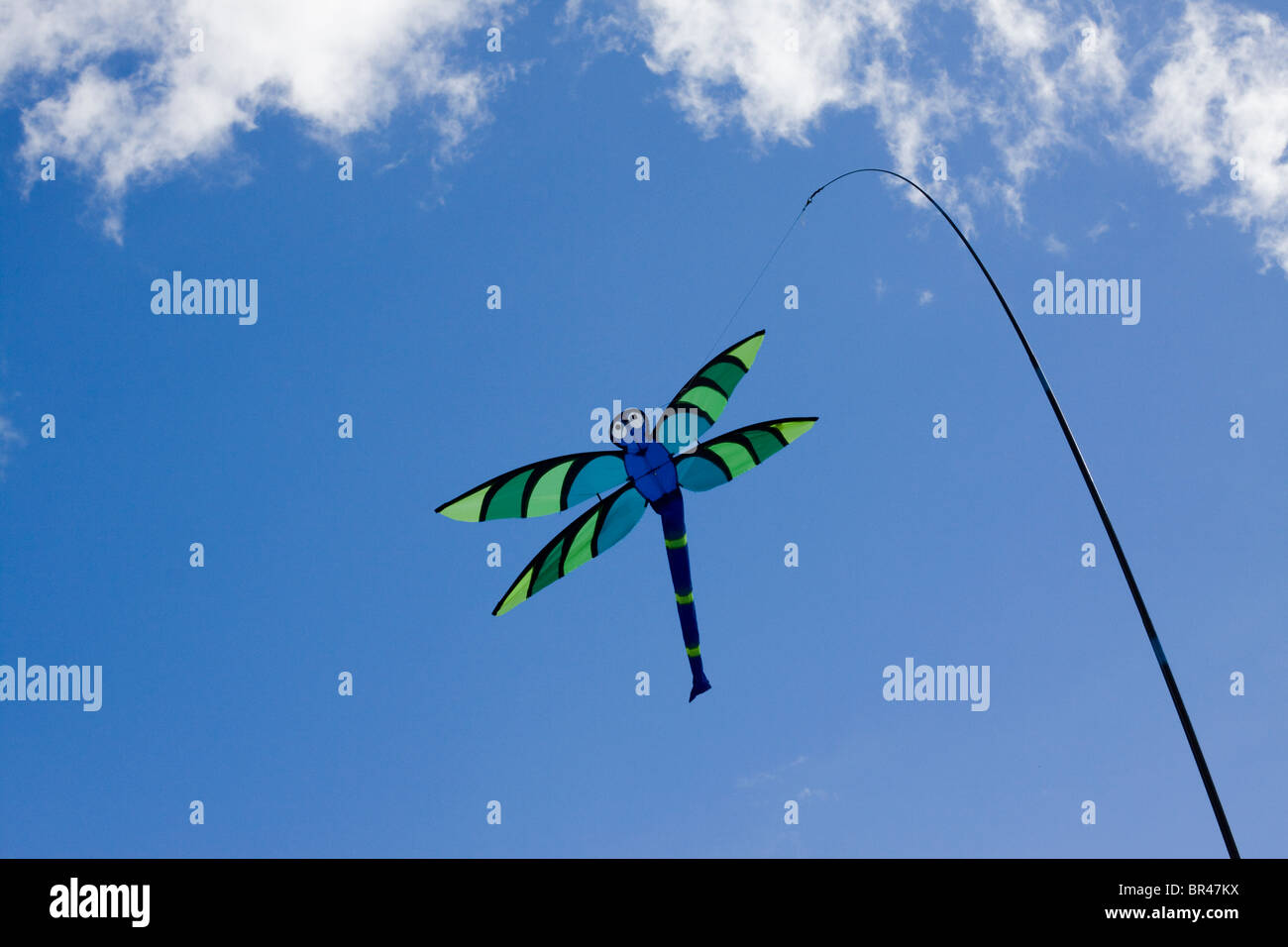 Dragonfly Decor Stock Photos & Dragonfly Decor Stock Images - Alamy