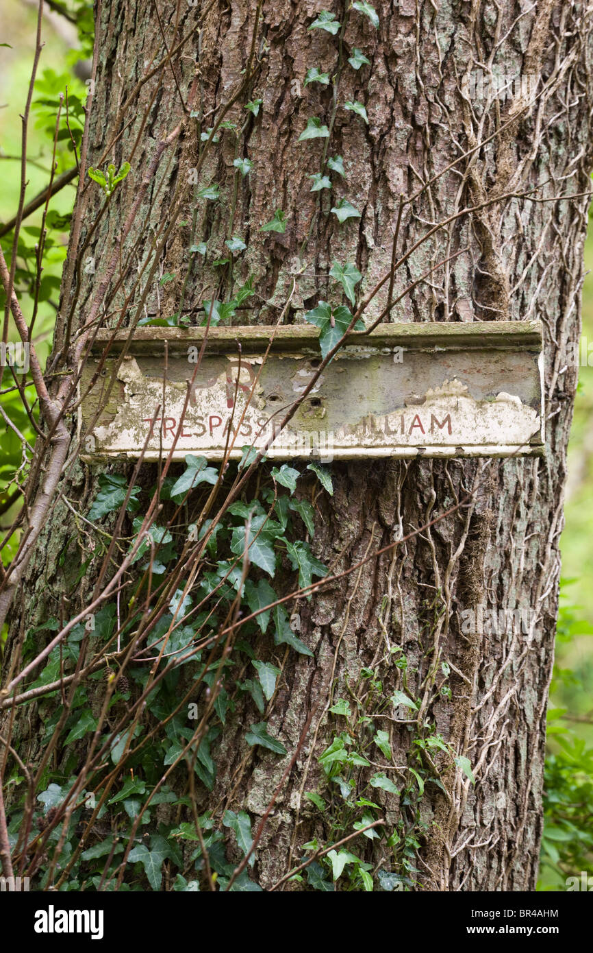 Decayed Private Trespassers William sign in woodland near the Cotswold village of Kineton, Gloucestershire - Stock Image