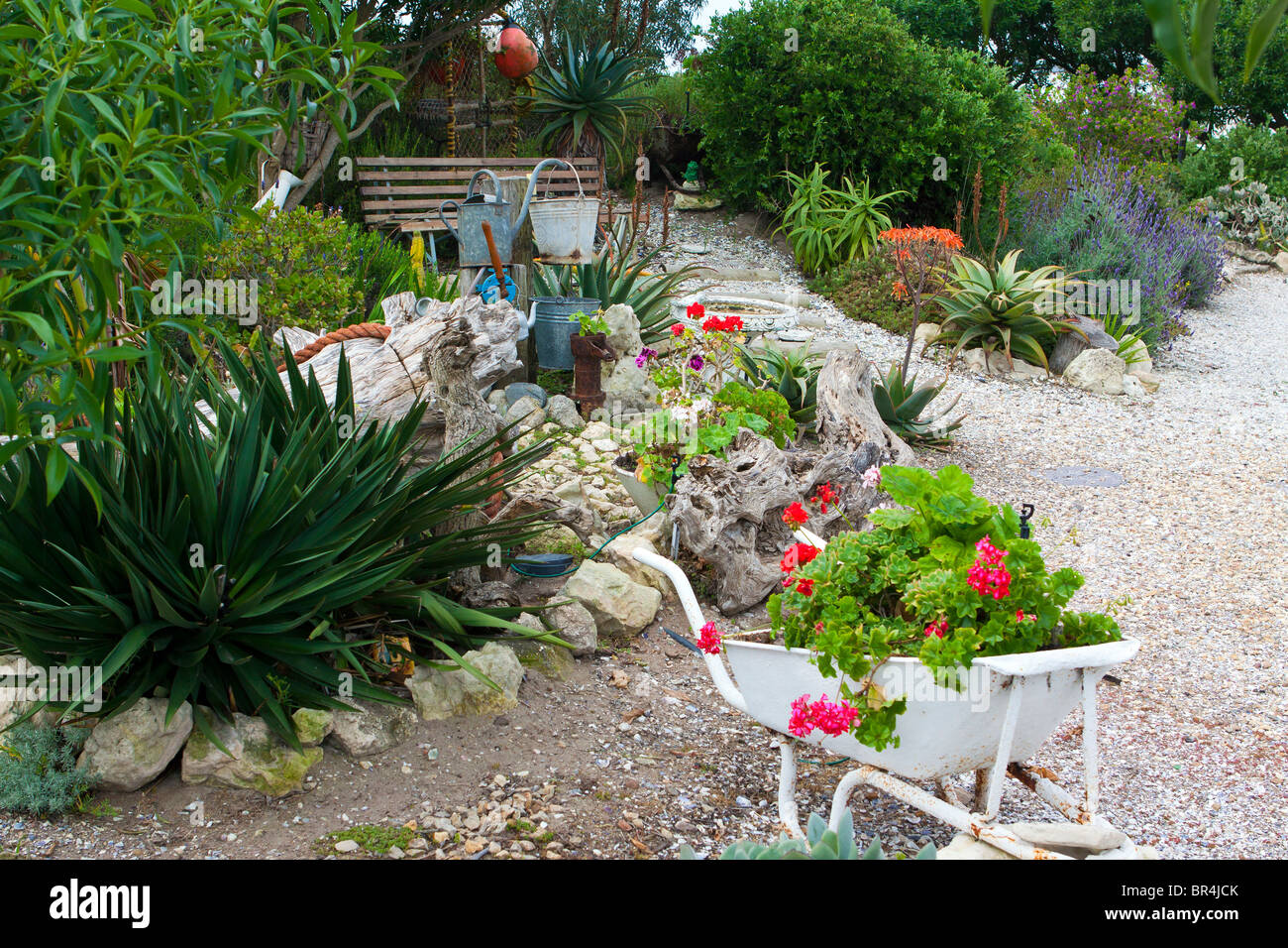 Picturesque Garden In Paternoster A Small Town The West Coast Of