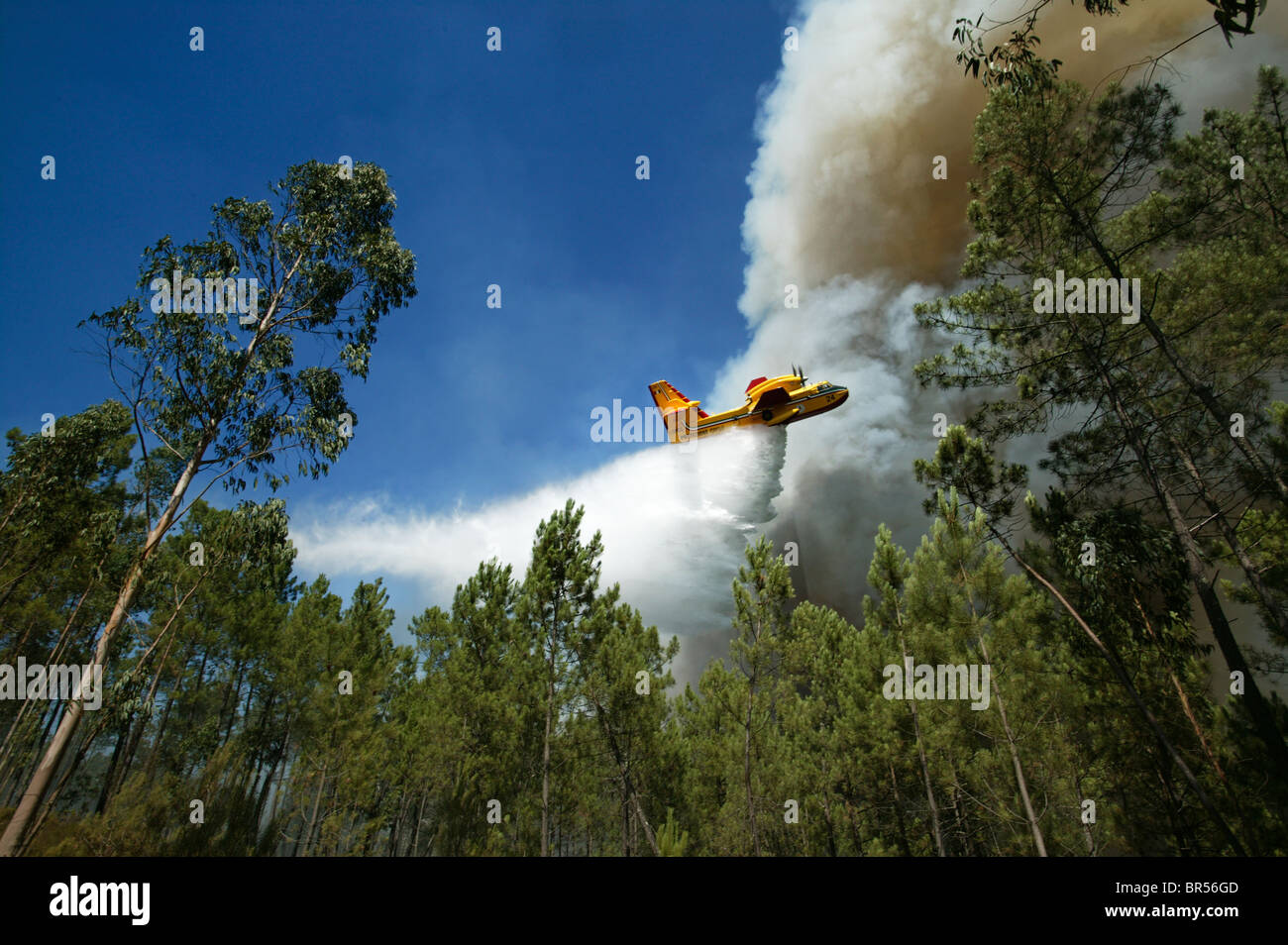 Airplane drops water over a wildfire in central Portugal - Stock Image