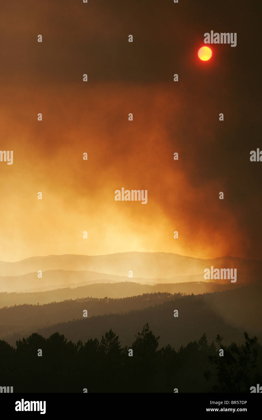 Sun shines trough the smoke of a wildfire - Stock Image