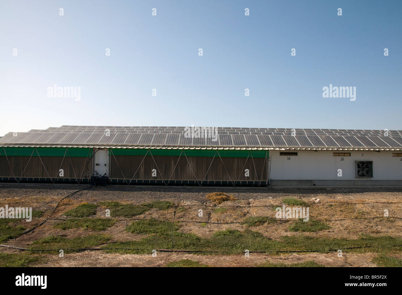 Electricity converting solar panels on a roof of a Turkey coop Stock Photo