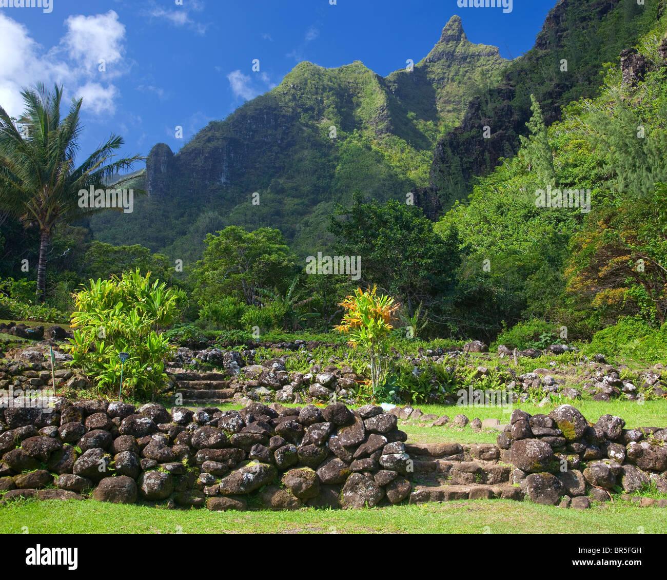 Kauai hi rock terraces in the limahuli garden national - National tropical botanical garden kauai ...