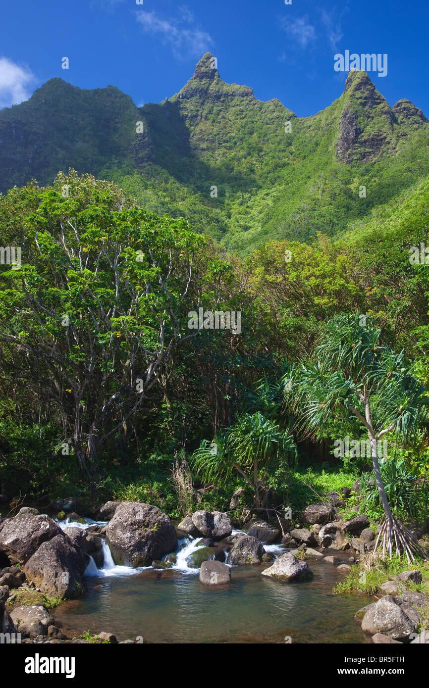 Hawaii kauai national tropical botanical stock photos - National tropical botanical garden kauai ...
