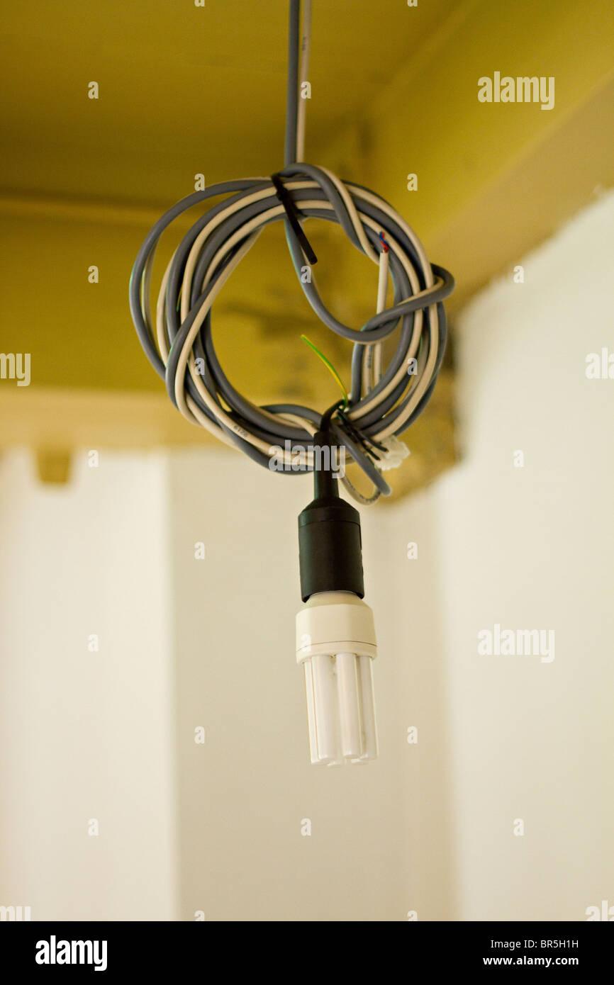 Cabling for energy saving light bulb - Stock Image