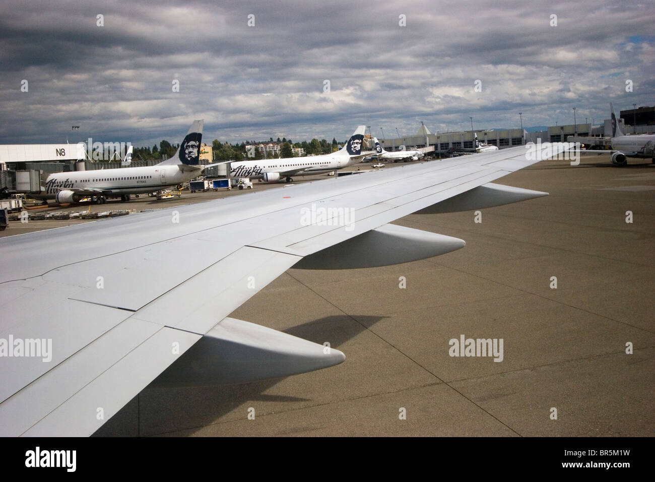 Airport tarmac, apron, with several Alaska Airlines airplanes above airplane wing of another aircraft, Seattle Washington - Stock Image