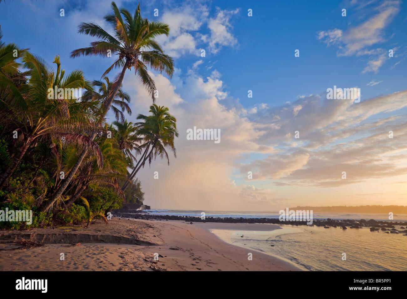Kauai, HI Sunrise clouds and overhanging palm trees on Hanalei Bay near Makahoa point - Stock Image