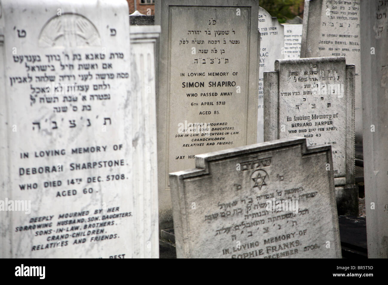 Headstones in a Orthodox Jewish cemetery in Enfield, North London. - Stock Image