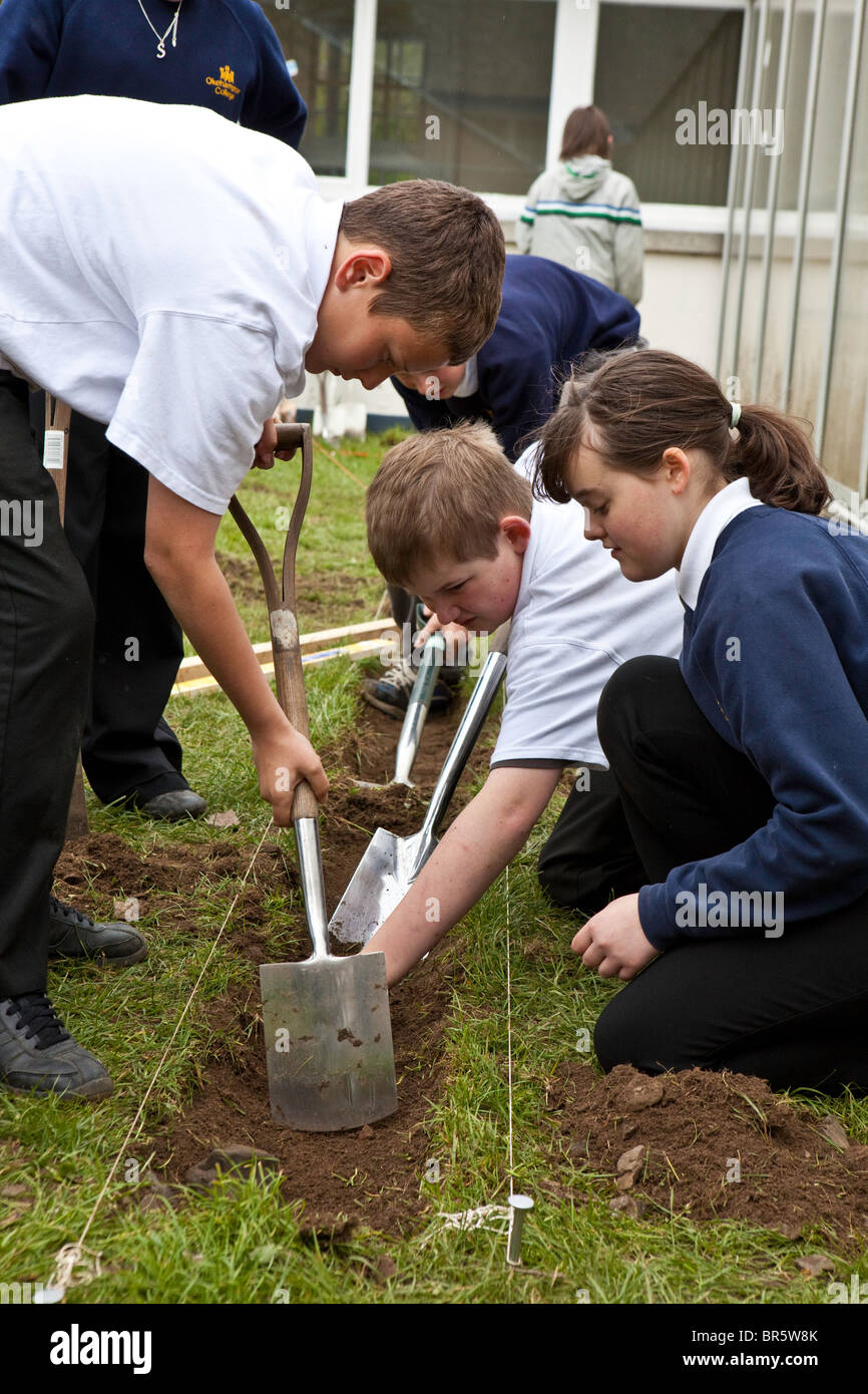 School children at Okenhampton College in Devon planting vegetables as part of a sustainability project. - Stock Image