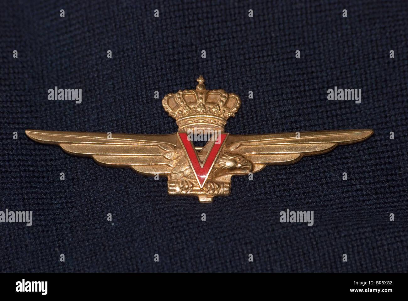 Italian Airforce 1937-1946 Pilots wings 'Velocisti' - Stock Image
