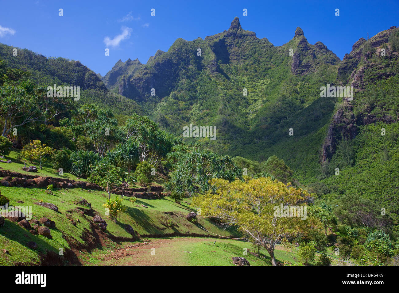 Kauai, HI: Makana mountain towers above the Limahuli Garden, National Tropical Botanical Garden - Stock Image
