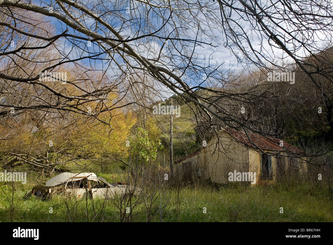 An abandoned car and house in the East Cape town of Tokomaru Bay, New Zealand. - Stock Image