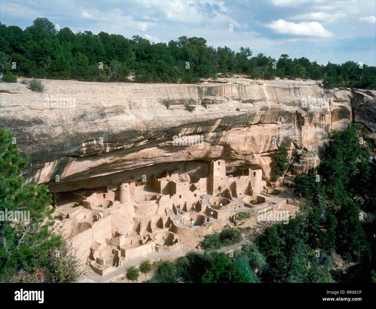 Cliff Palace, Anasazi Ruins, Mesa Verde National Park, Cortez, Colorado, USA - Stock Image